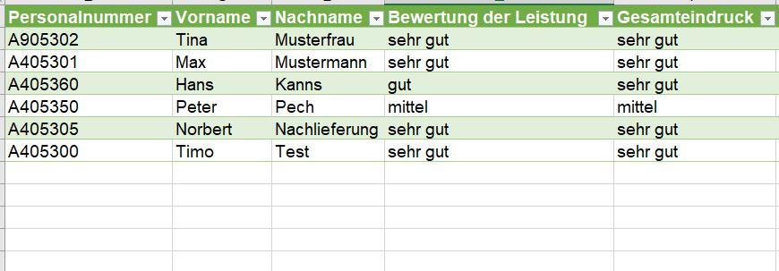 Fragebogenauswertung Power Query