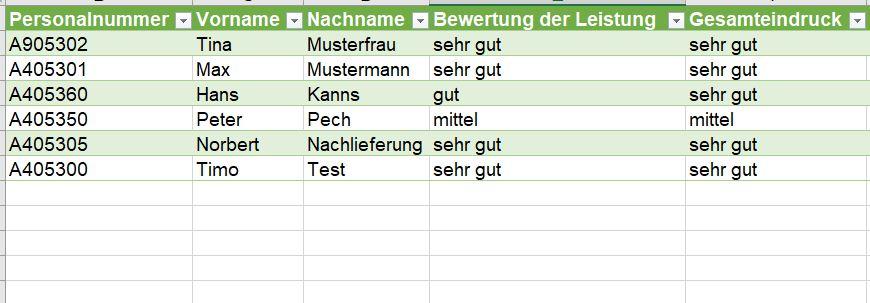 Excel Formular Erstellen Und Auswerten Archive Holzborn Consulting